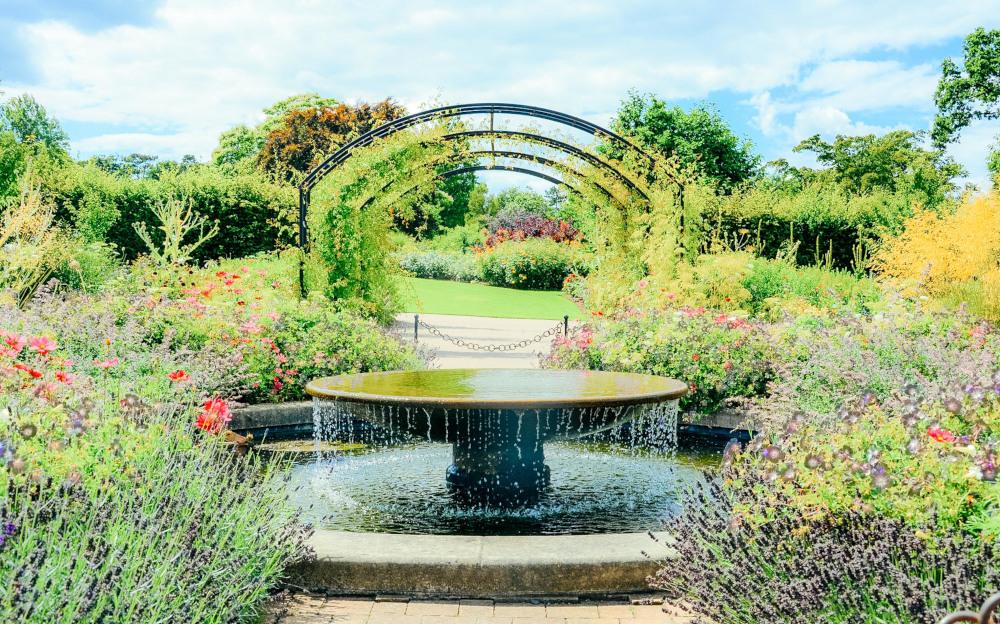 ウィズリーガーデン (RHS Garden Wisley)