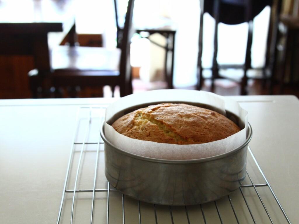 オーブンで焼き上げたシードケーキ