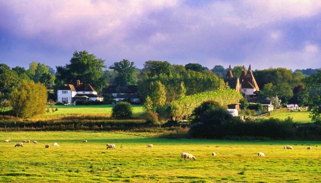 テンターデンの田園風景
