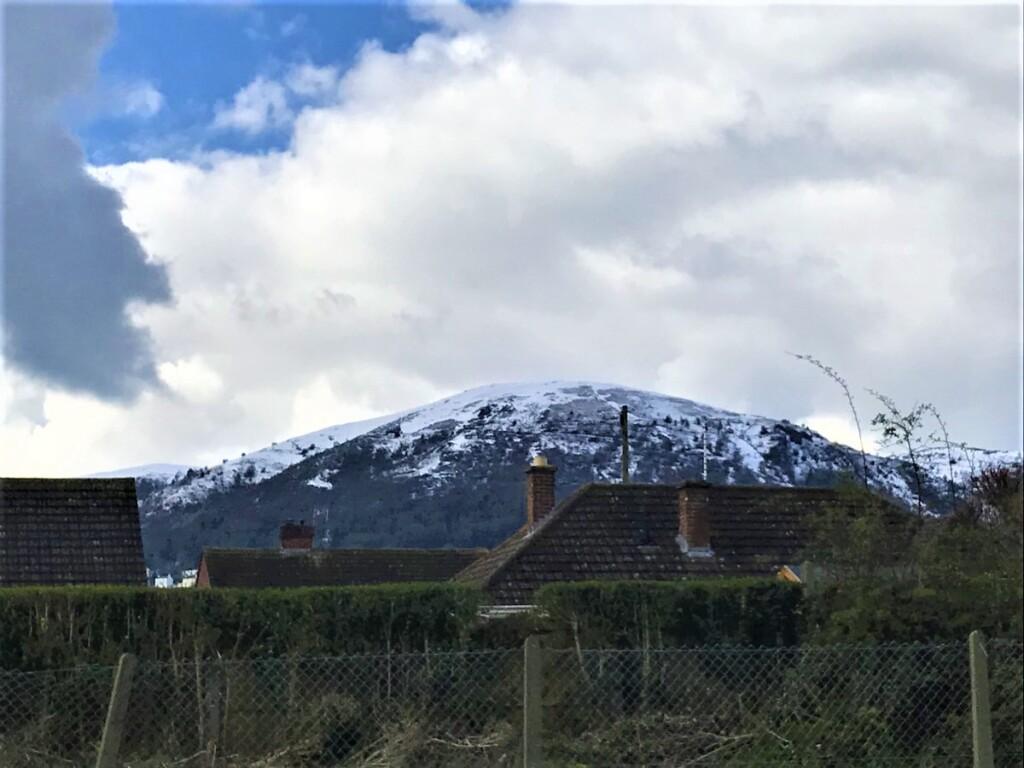 近所の丘が雪景色に