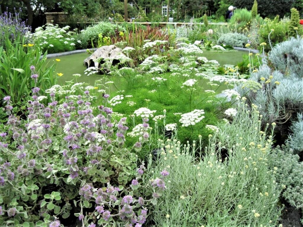 『チェルシー・フィジック・ガーデン』(Chelsea Physic Garden)