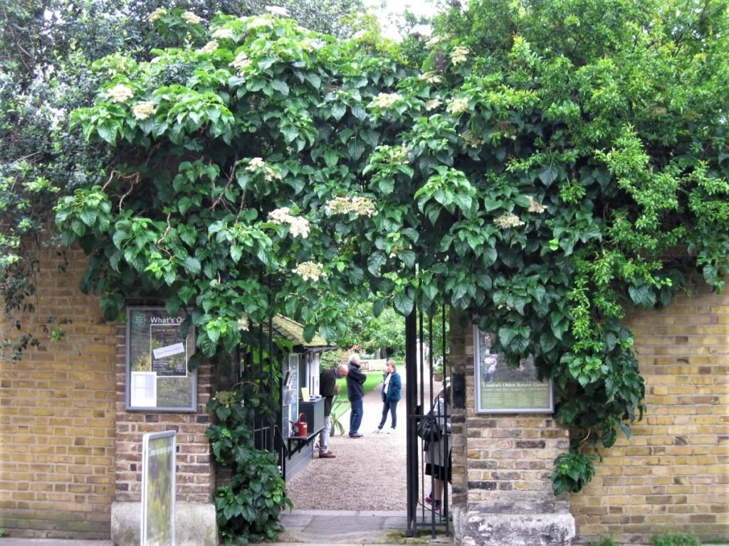 『チェルシー・フィジック・ガーデン』の入口