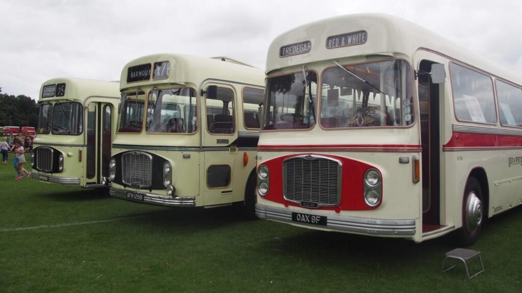 丸みのあるフォルムのレトロなバス