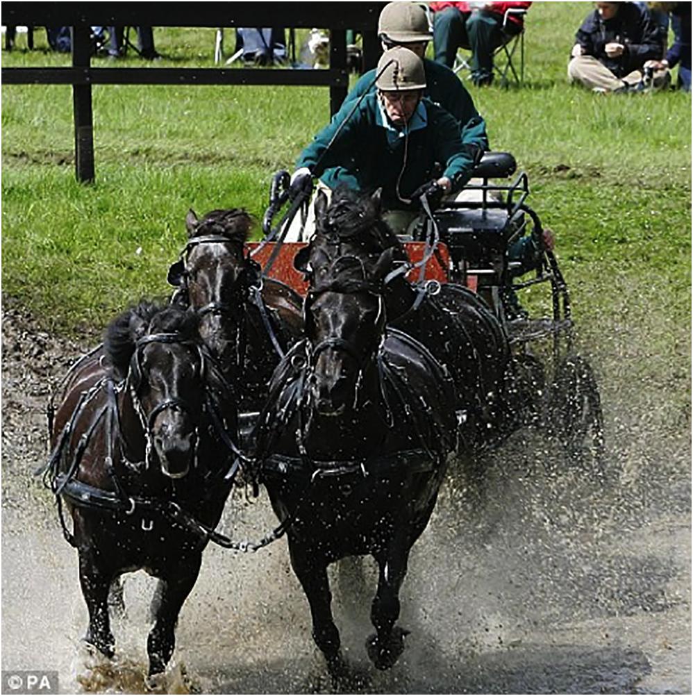 馬車を操縦なさるエジンバラ公フィリップ殿下