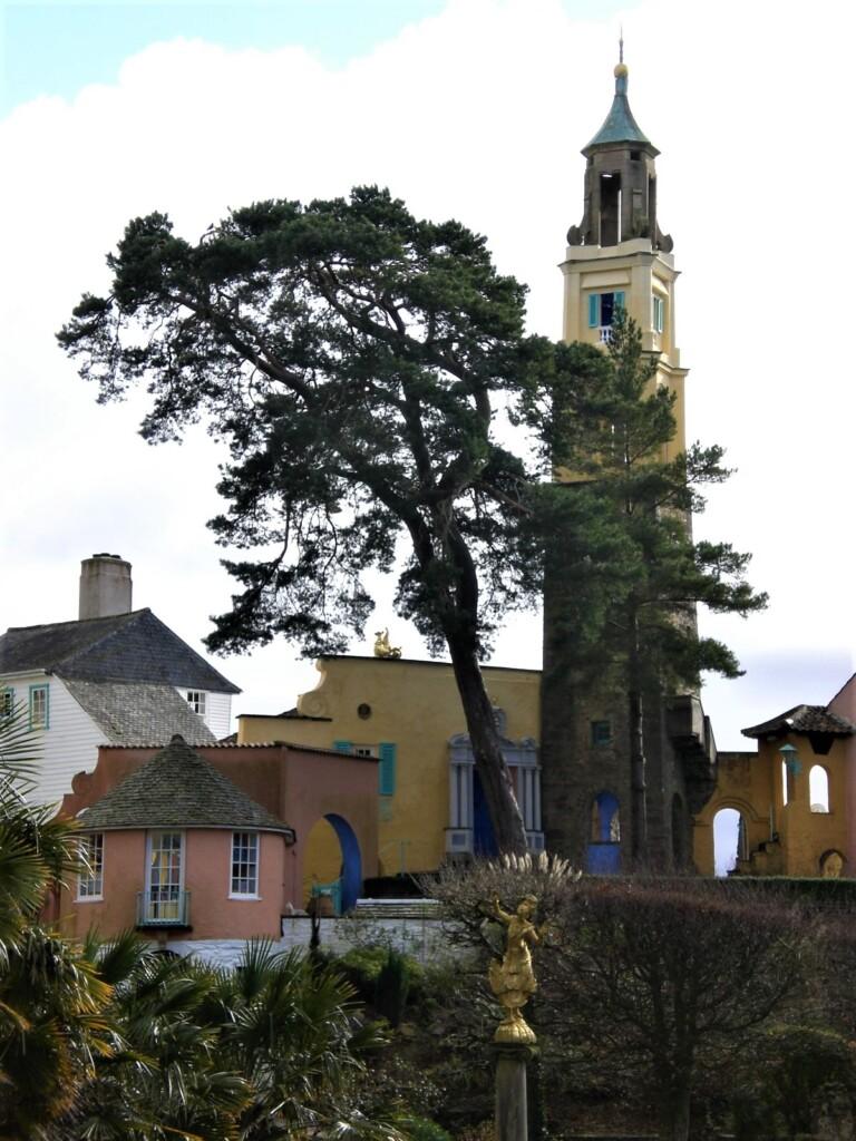 鐘塔と松の木